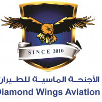 Diamond Wings Aviation  logo