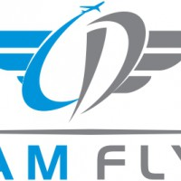 Dream Flyers Flight Academy logo